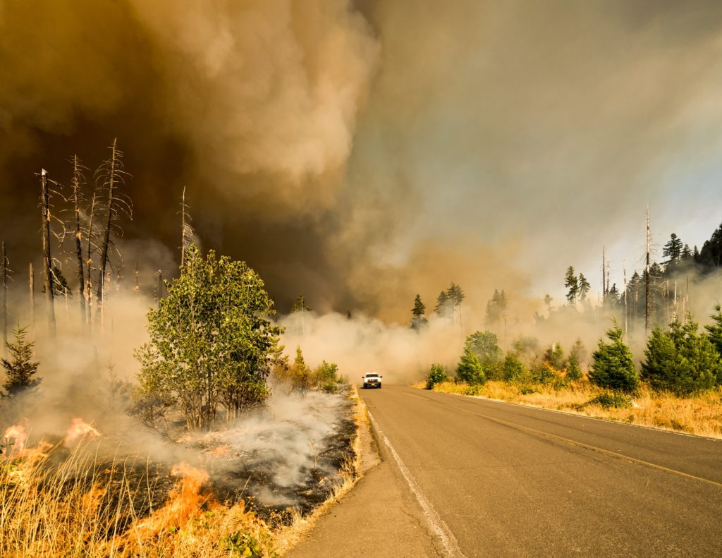 Why California wildfires are happening